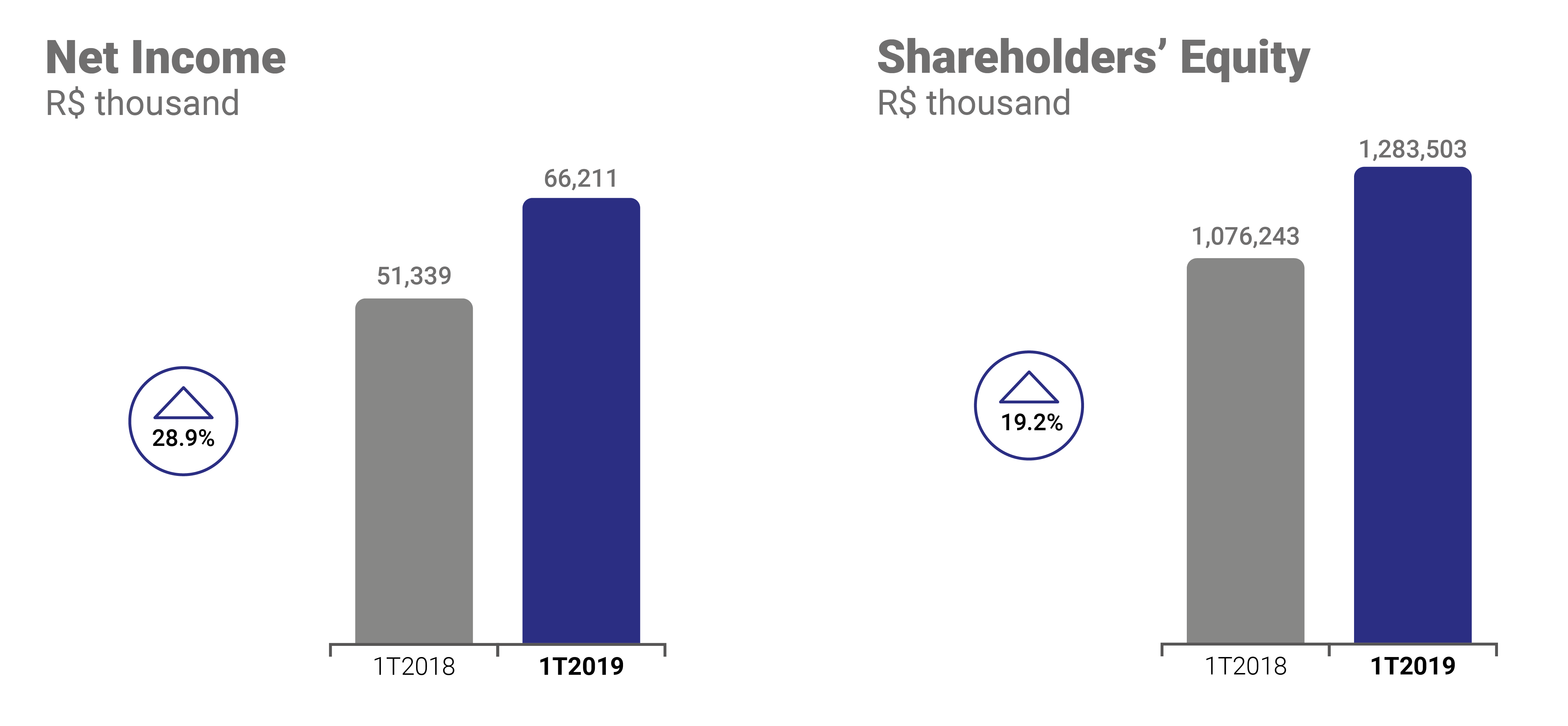 Net Income and Shareholders' equity